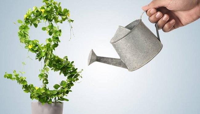 Estrategia para ganhar dinheiro